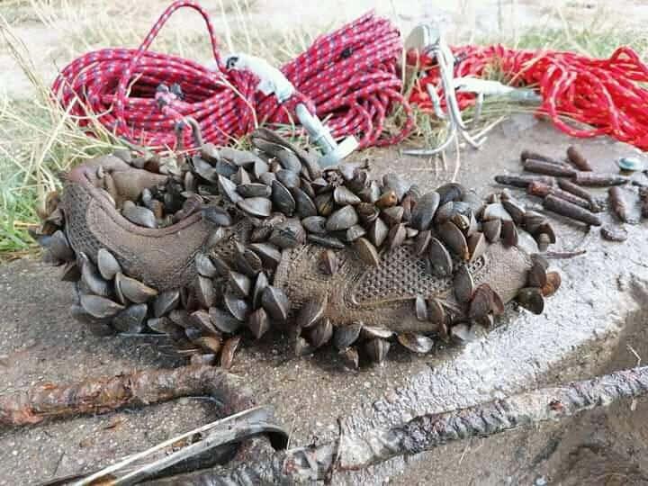 magnet fishing topánka